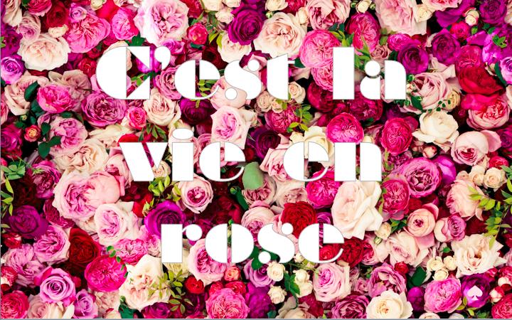 C'est La Vie En Rose | The Polka-dot Maven